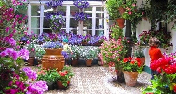 patios cordoba