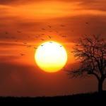 Llega el verano: todo sobre el solsticio del 21